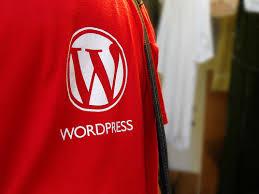 Author websites like KarleneCameronBooks.com is made with WordPress.